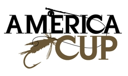 America Cup 2013