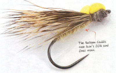 Balloon Caddis